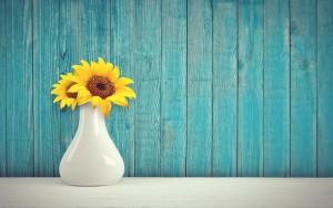 sunflowers-3292932_1280